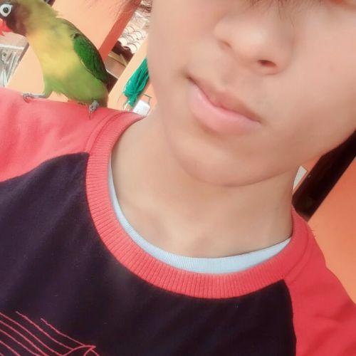 Mateus Santos Profile Picture
